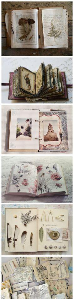 【标本】喜欢美丽的标本,喜欢有故事的明信片,喜欢各种风格的笔记本,喜欢一切的美好,把它们都收集起来,偶尔回头看看,心里总会充满大大的满足感。