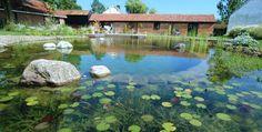 La primera piscina biológica se hizo en Austria en 1985, por la empresa Biotop Natural Pool.