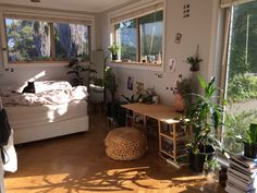 aevvus: My room this summer - - ̗ ̀sunflower princess ̖ ́-