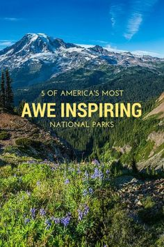 Mount Rainier National Park - 5 of America's most awe inspiring National Parks for your USA road tripping itinerary. See more at http://wanderlusters.com/awe-inspiring-national-parks/ #travel #wanderlust #usa