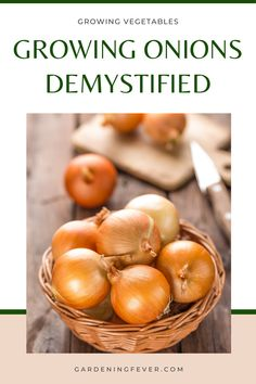 Are you thinking about growing onions? You should learn about the many varieties of onions, and some of the main differences between them. In this blog post, you'll learn everything you need to know about growing onions demystifies. The best tips on gardening for beginners #plants #onions #gardening #gardeningtips #healthyplants #growingplants #growingvegetables #gardeningfever Planting Vegetables, Growing Vegetables, Fruits And Veggies, Vegetable Gardening, Growing Onions, Growing Plants, Bird Bath Garden, Glass Garden, Gardening For Beginners