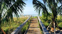 Walking the path to Sanibel beach in Florida!