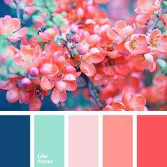 Ideas Wedding Flowers Teal And Coral Color Pallets For 2019 Aqua Color Palette, Color Schemes Colour Palettes, Spring Color Palette, Bedroom Color Schemes, Spring Colors, Color Combos, Coral Color Schemes, Bedroom Colors, Color Schemes For Office