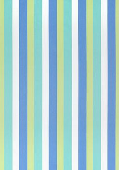 Thibaut jayanti stripe in blue and green