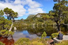 The Wombat Pool, Cradle Mountain Lake St Clair National Park. Places Around The World, Around The Worlds, Places Ive Been, Places To Go, My Dream Came True, Wombat, Tasmania, Pet Birds, Lakes