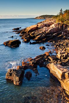 Just after sunrise along Park Loop Road in Acadia National Park- Mount Desert Island- Bar Harbor, Maine
