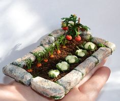 Miniature Garden, Dollhouse garden, Miniature Vegetable. length 10.5 cm, width 7 cm The scale is 1:12. hand Made beautiful realistic miniature. polymer clay. Made with love! My handcrafted miniature art is made with careful attention to detail using only the finest materials.  Not a toy, only for adult collectors! If you are looking for a unique element to add to your miniatures, this is it!  The brightness and shade of the colors may be slightly different from what you see on the screen of…