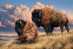 Rosemary Millette Prairie Monarch Bison Bufallo A/P Art Print Wildlife Paintings, Wildlife Art, Animal Paintings, Animal Drawings, Horse Drawings, American Bison, Native American Art, Westerns, Buffalo Art