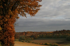Ne vous trompez pas, pour que chaque automne soit une promesse pour demain. European Models, France, Paris, Country Roads, Celestial, Mountains, Sunset, Nature, Travel