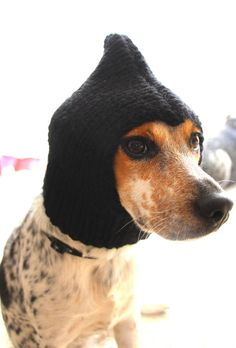 Small dog hat dog cowl pet clothing pet cowl by FruitofPhalanges, $20.00