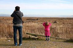 10 lugares para avistar aves en Castilla y León