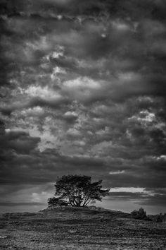 Brewing Storm by Ruud van Putten on 500px