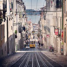Wall art travel. Lisbon, Portugal photography. Set of 8 photograhs of Lisbon. Fine art photography.Home Decor.Portugal Print Set.Pingeon.