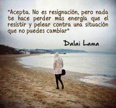 """""""Acepta. No es resignación, pero nada te hace perder más energía que el resistir y pelear contra una situación que no puedes cambiar"""". Dalai..."""