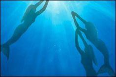 Google Image Result for http://images1.fanpop.com/images/photos/1700000/h20-h2o-mermaids-1729993-500-333.jpg