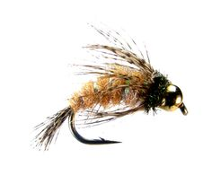 A Closer Look At The October Caddis Hatch | Fly Fishing | Gink and ...