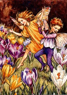 Illustration of the Crocus Fairies from Flower Fairies of the Spring. A boy and a girl fairy run across a field which is covered with crocuses. This illustration originally appeared in Flower Fairies of the Garden, Author / Illustrator Cicely Mary Barker Cicely Mary Barker, Fairy Pictures, Vintage Fairies, Mystique, Beautiful Fairies, All Nature, Flower Fairies, Fantasy Illustration, Fairy Art