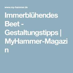 Immerblühendes Beet - Gestaltungstipps   MyHammer-Magazin