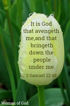 2 Samuel 22:48 Jesus Quotes, Bible Quotes, Bible Verses, Scriptures, Christian Post, Christian Quotes, The Great I Am, Christian Motivation, 2 Samuel