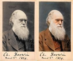 Amazing Colorized Historical Photos You Shouldn't Miss - Charles – Darwin, an English naturalist and geologist best known for his theory on evolution. Colorized Historical Photos, Colorized History, Historical Pictures, Top Photos, Famous Photos, Iconic Photos, Charles Darwin, Robert Darwin, People Photography