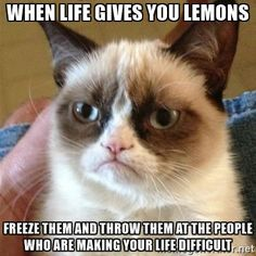 grumpy-cat-when-life-gives-you-lemons-freeze-them-and-throw-them-at-the-people-who-are-making-your-l.jpg (400×400)