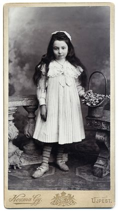 +~+~ Antique Photograph ~+~+  Love all of the details in this photograph.  The girls charming dress, her necklace, the basket of hydrangeas, the animal figurine at her feet and those sweet but well worn shoes.