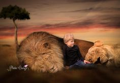 Fairytales hoot, on the Savannen with the lions by Photo Osenga