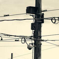 Phone poles