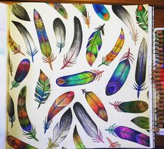 Feathers Enchanted Forest. Penas Floresta Encantada. Johanna Basford