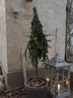 Opstammet træ lavet med en tyk kæp i en krukke med jord. Strained wood made with a thick stick in a pot of soil. Wrapped with spruce and lau branches with steel wire and final Natural Christmas, Modern Christmas, Scandinavian Christmas, Christmas Art, Beautiful Christmas, All Things Christmas, Winter Christmas, Christmas Mantels, Christmas Ornaments