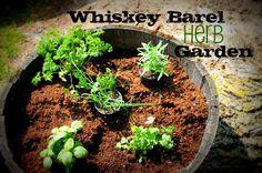 How to make a Whiskey Barrel Herb Garden. Fresh herbs all summer long!