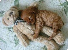 snuggling--> SO CUTE