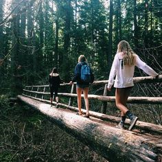 Going on an adventure in the woods with your friends.