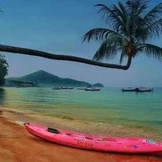 Kayaks in Tahiti - #kayak #kayaking