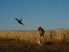 South Dakota's Premier Hunting Destinations