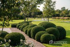Aangelegde tuinen door tuinonderneming Monbaliu - Landelijke tuin bij herbouwde hoeve met SPEELSE ZWEMVIJVER in een landschappelijke omgeving