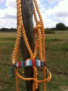If only I had a horse. New Project Ideas, Horse Halters, Western Horse Tack, Headstall, Pretty Horses, Saddles, Leather Working, Equestrian, Horse Stuff