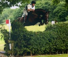 Wanou aged 5 at Somerford Park ODE