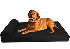 Dogbed4less Extra Large HeadRest Orthopedic Memory Foam Pet Dog Bed with Waterproof Internal Case  Washable External Canvas Cover 55 Length X 37 Width Black * Learn more by visiting the image link.