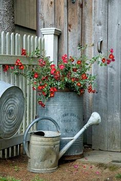 Large vintage tin pots and watering can.