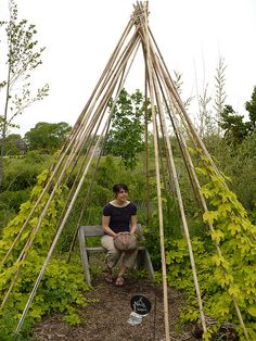 Im going to make a sweet pea tent for my kidlets