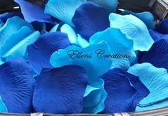 Blueberry Scented Soap Petals: http://www.outbid.com/auctions/10531-the-everything-bazaar#6