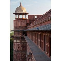 Two pigeons sit on the roofs ledge Agra fort India Canvas Art - Brent Bergherm DanitaDelimont (12 x 17)