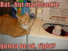 But...mai blankie gonna be ok, right?
