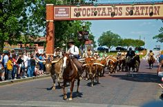 Stockyards. Fort Worth, Texas, home of  Billy Bob's Honky-tonk, the long-horn steer drive and the Turantula Train final destination out of Grapevine, TX.
