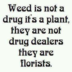 #legalize #marijuana Legalize It, Regulate It, Tax It! http://www.stonernation.com Follow Us on Twitter @StonerNationCom