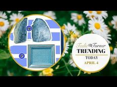 Teelie Turner Review | Update Your Home With Spring Colors | Teelie Turner   Update Your Home With Spring Colors  Get in Shape This Spring   #TeeliesTV