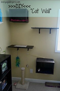 Lovely Again...By Kris: DIY Cat Shelves... I am going to try to look for crates at antiques stores to use for this project.