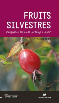 """@Serradora Boix  #SJMA13 """"Fruits silvestres mengívols i tòxics de Cerdanya i el Capcir"""" de J. Muntané naciodigital.cat/viurealspirine… pic.twitter.com/GMOThcwXaL"""