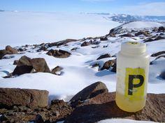 Per què no es pot orinar a la neu de l'Antàrtida?